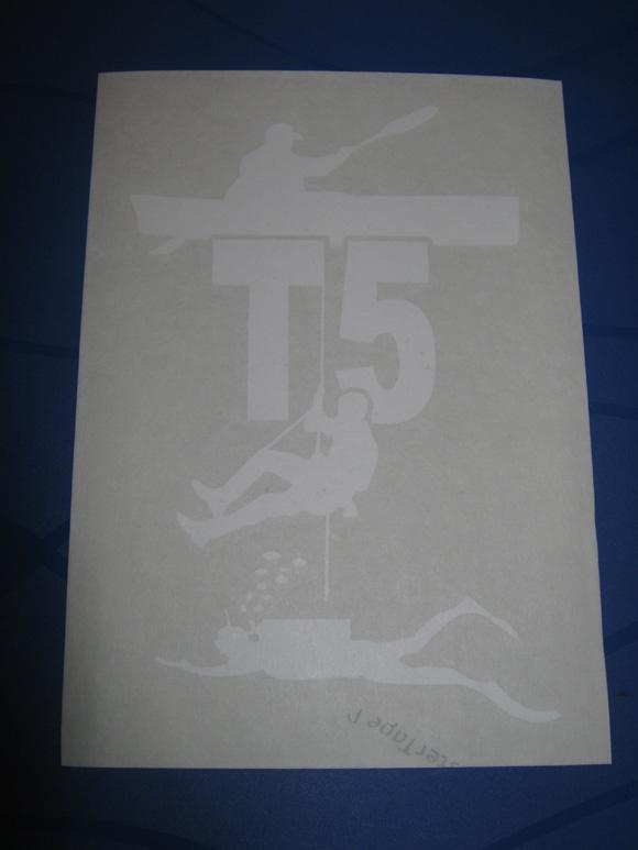 Schritt 2 - fertiges Logo auf Trägerfolie